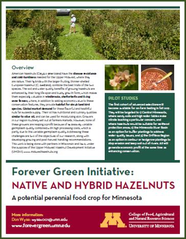 hazelnut factsheet front page image