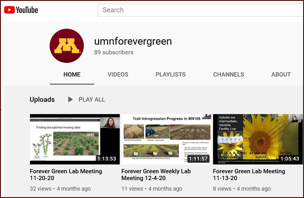 Forever Green Lab Meetings on YouTube channel