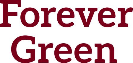 Forever Green U of MN Maroon wordmark